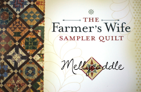 My New Adventure – The Farmer's Wife Sampler Quilt