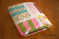 My Completed Piece of Cake 3 Quilt